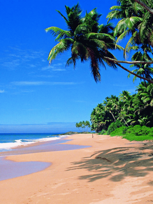 South India Tour Package including Goa-Mumbai